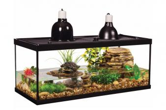 Best Turtle Tank Setup Kit